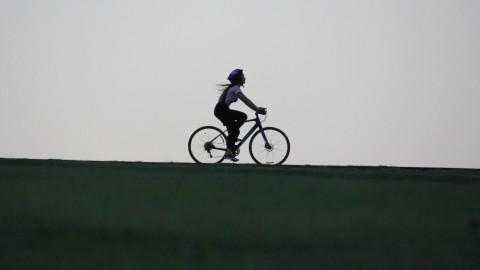 Nieuwe fietsbrug verbindt Gaasperpark en Diemerbos