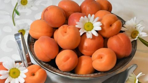 Abrikozentijd, een heel gezond klein stukje fruit
