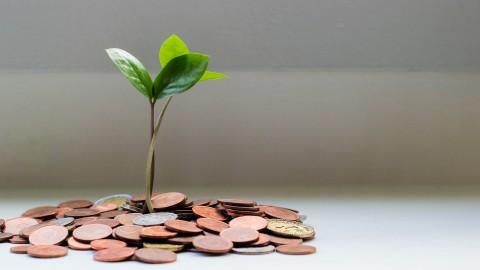 Bespaar drastisch geld door de makkelijkste dingen te doen!