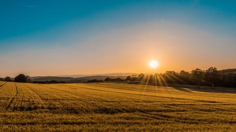 Subsidie voor plattelandsontwikkeling in de Kop