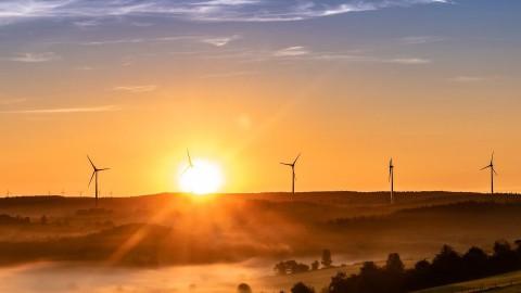 Duurzame Dinsdag: Dit doet Alkmaar tegen klimaatverandering