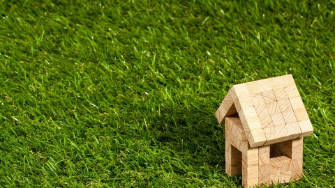 Wateroverlast? Kies voor groen dak!
