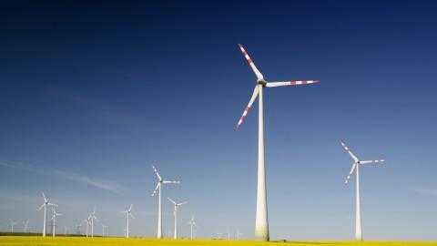 Dit doet Alkmaar tegen klimaatverandering